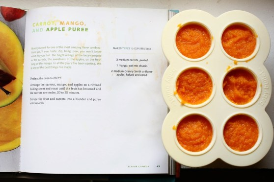 Carrot Apple and Mango Puree